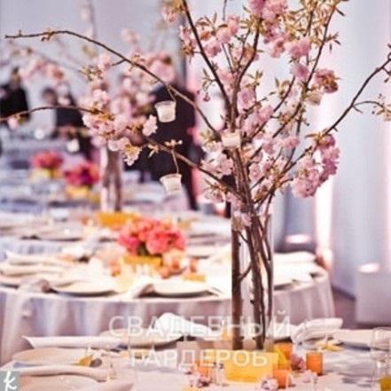Свадьба в стиле «Сакура» — весеннее настроение